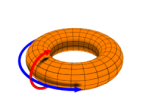 A diagram depicting the poloidal direction (the red arrow), and the toroidal direction (the blue arrow).