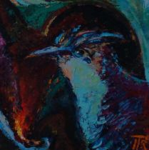 pták-hnízdo